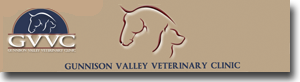 Gunnison Valley Veterinary Clinic